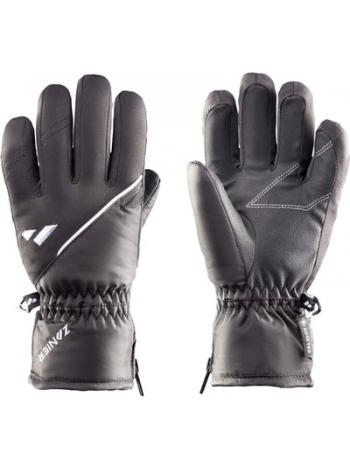 Горнолыжные перчатки Zanier RAURIS.GTX 2000