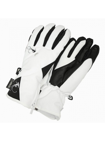 Горнолыжные перчатки Zanier Z AURACH GTX 11